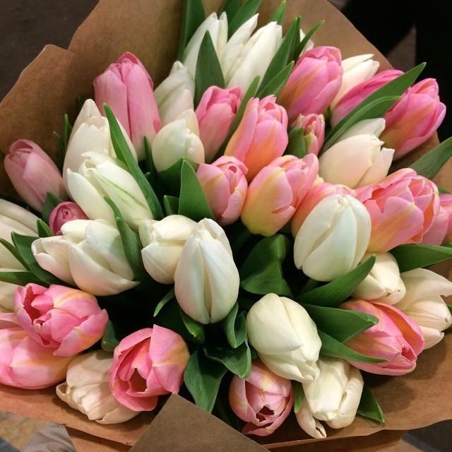 JulijaNi  - тюльпаны1.jpg