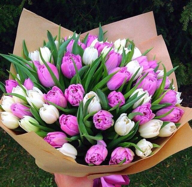Fiolina - тюльпаны(1).jpg