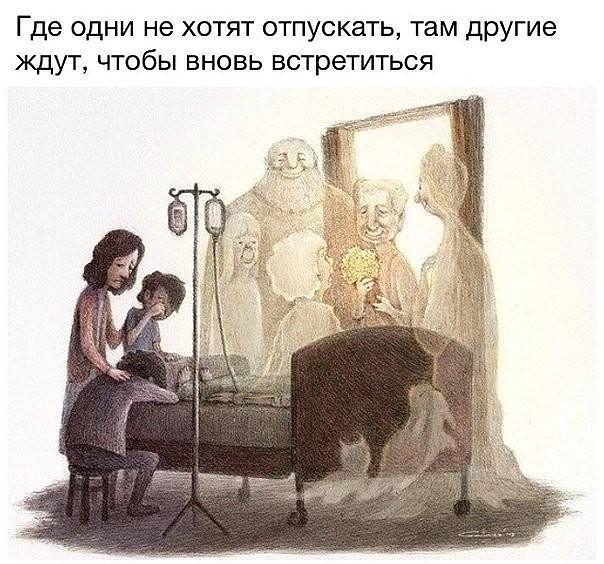 Путь души животного после смерти.. - 123e.jpg