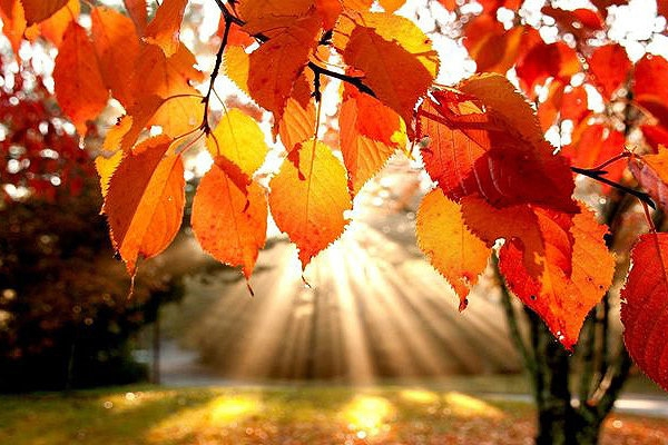 Осеннее равноденствие - осеннее равноденствие.jpg