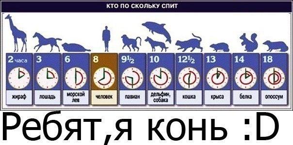 Сколько времени вы спите? - время сна.jpg