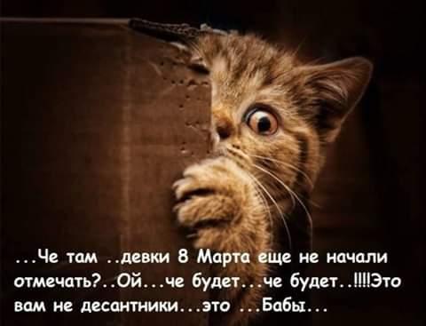 Маги шутят - IMG-20190308-WA0004.jpg