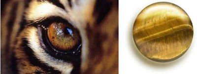 Тигровый глаз - tigers-eye-2.jpg