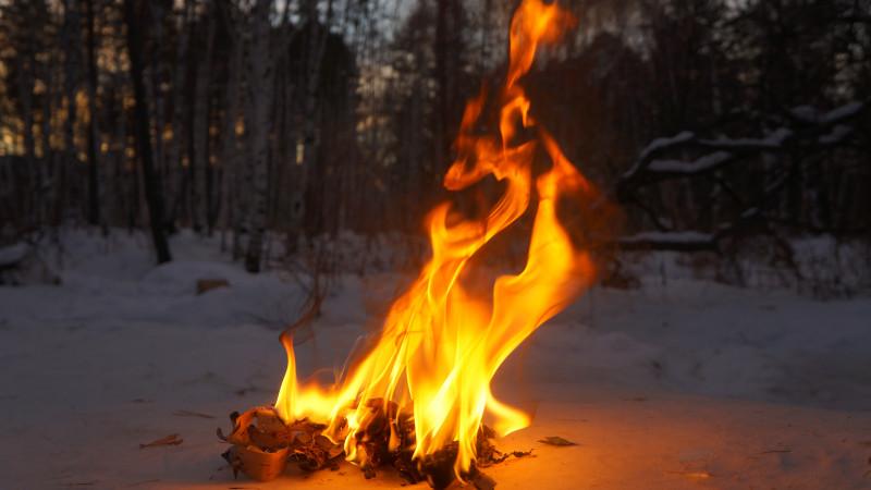 Огонь - DSC00440.JPG