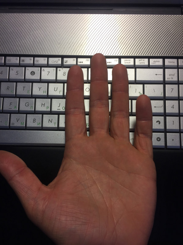 левая рука - левая рука.JPG