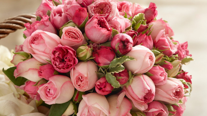 Talullah Tu, огромное спасибо! - flowers-bouquet-roses-pink-flower-wallpapers-big-size-1920x1080 (1).jpg