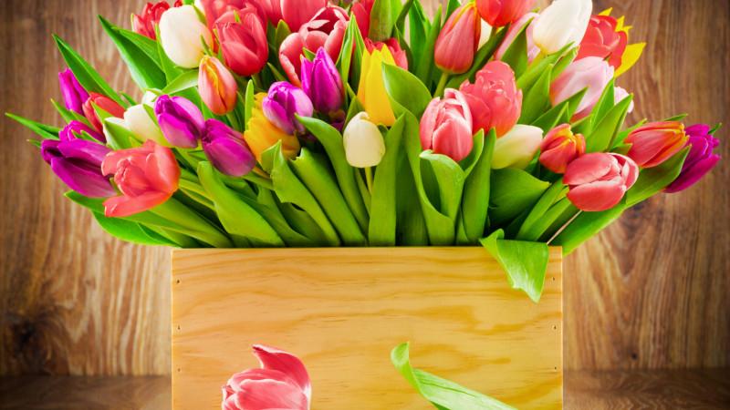 Talullah Tu, огромное спасибо  - korobka-cvety-buket-tyulpanov.jpg