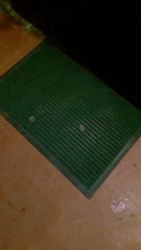 Две монеты по 5 коп под дверью, фото - IMAG1257.jpg