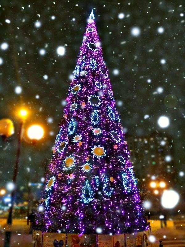 Новогодний конкурс Волшебница Зима - zzaWftCNc7w.jpg