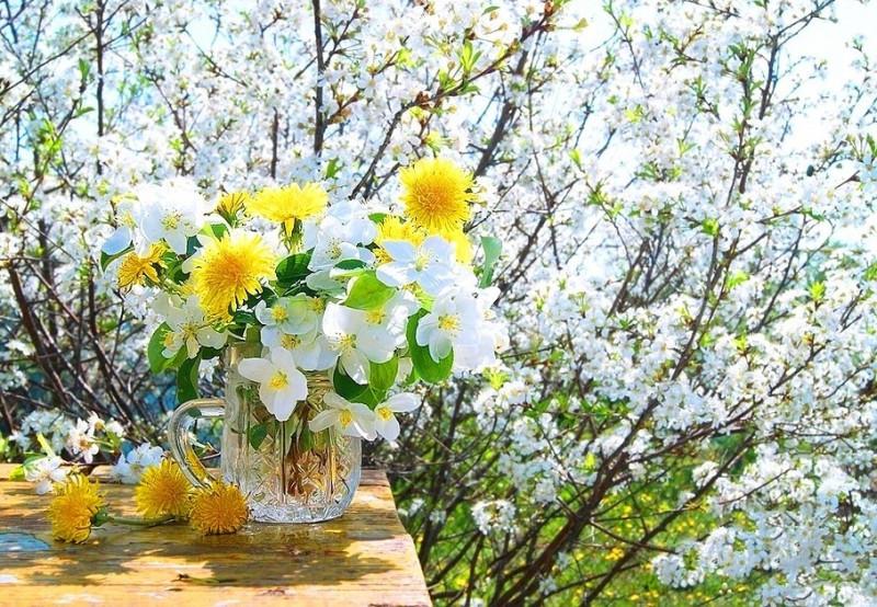 Весеннее гадание. Тренировка закрыта - Весна и счастье.jpg